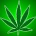 Marijuana Pro